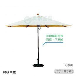 玻璃纖維傘-
