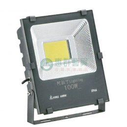 壓鑄鋁烤漆LED戶外投射燈-100W