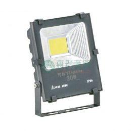 壓鑄鋁烤漆LED戶外投射燈-30W